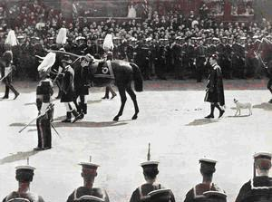 Funeral Procession of King Edward VII, 20 May 1910, with Caesar, the King's dog